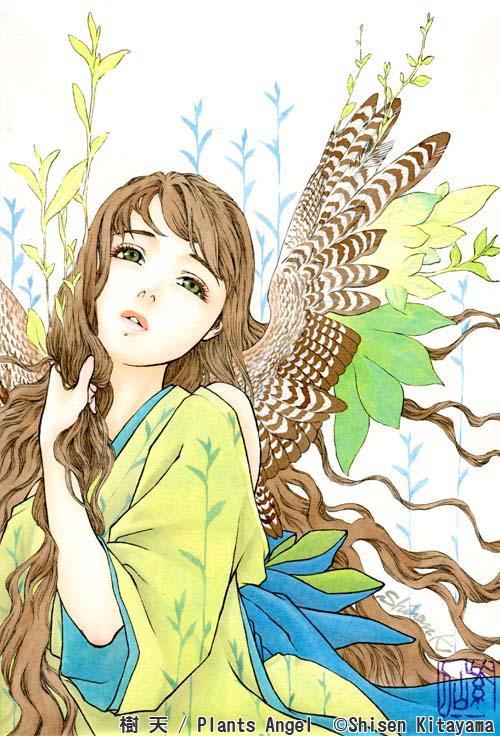 14plantangel