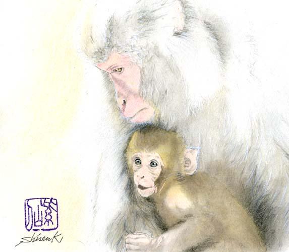 japanese monkey2